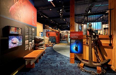 Discover at Kaikoura Museum